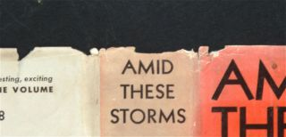 Amid These Storms